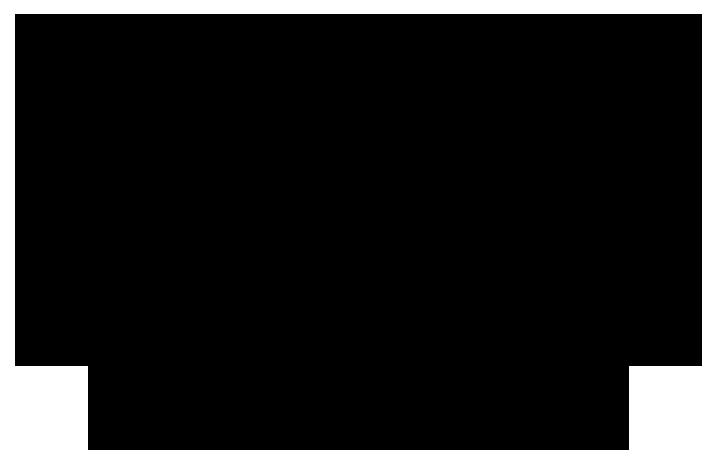 logo stal sluisjesdijk